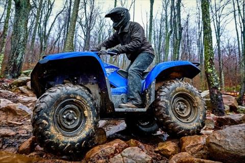 2016 Yamaha Grizzly EPS in Menomonie, Wisconsin