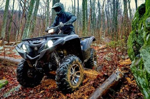 2016 Yamaha Grizzly EPS SE in Shawnee, Oklahoma