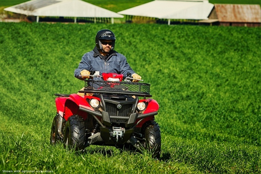 2016 Yamaha Kodiak 700 EPS in Geneva, Ohio