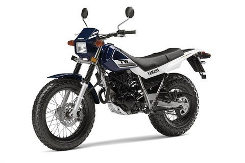 2016 Yamaha TW200 in Baldwin, Michigan