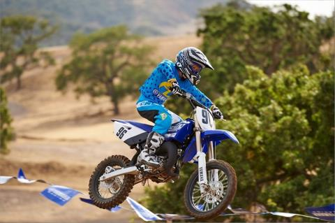2016 Yamaha YZ85 in Laurel, Maryland - Photo 21