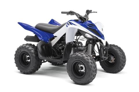 2017 Yamaha Raptor 90 in Coloma, Michigan