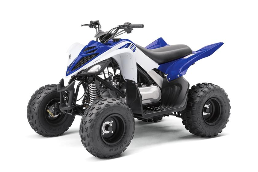 2017 Yamaha Raptor 90 in Sumter, South Carolina