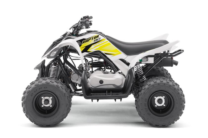 2017 Yamaha Raptor 90 in Phillipston, Massachusetts