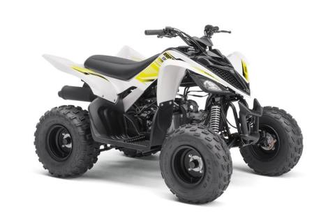 2017 Yamaha Raptor 90 in Deptford, New Jersey