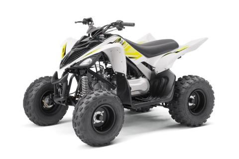 2017 Yamaha Raptor 90 in New Haven, Connecticut
