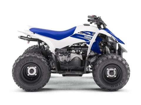 2017 Yamaha YFZ50 in Danbury, Connecticut