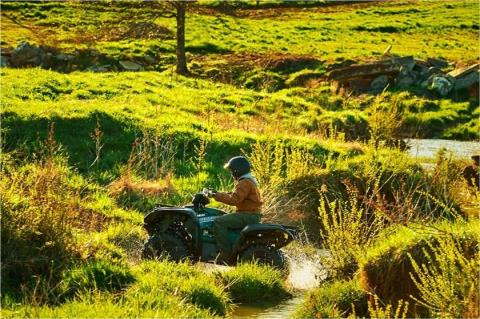 2017 Yamaha Grizzly EPS in Garberville, California