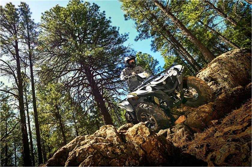 2017 Yamaha Grizzly EPS SE in Kamas, Utah