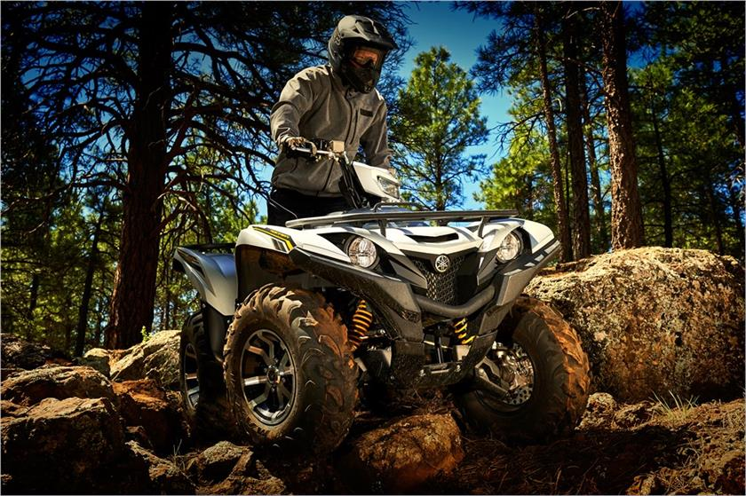 2017 Yamaha Grizzly EPS SE in Lowell, North Carolina