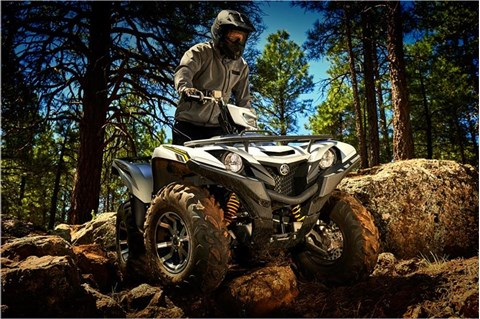 2017 Yamaha Grizzly EPS SE in Colorado Springs, Colorado