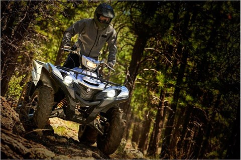 2017 Yamaha Grizzly EPS SE in Cookeville, Tennessee