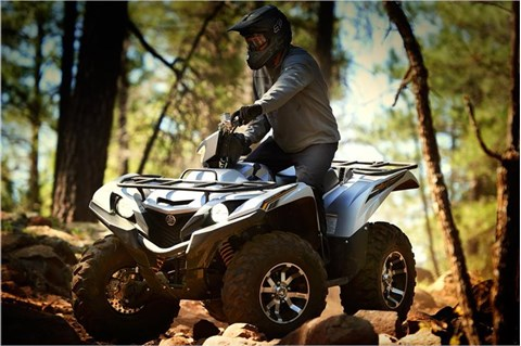 2017 Yamaha Grizzly EPS SE in Tamworth, New Hampshire