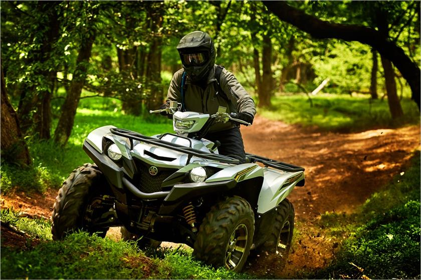 2017 Yamaha Grizzly EPS SE in Utica, New York