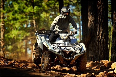2017 Yamaha Grizzly EPS SE in Denver, Colorado