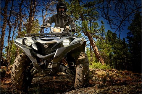2017 Yamaha Grizzly EPS SE in Derry, New Hampshire