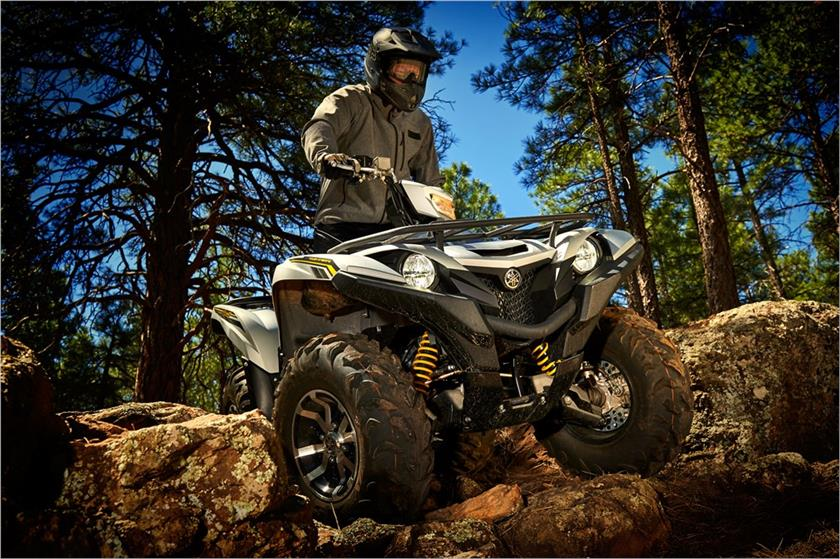 2017 Yamaha Grizzly EPS SE in Goleta, California
