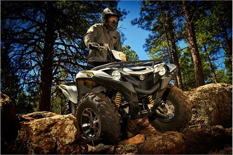2017 Yamaha Grizzly EPS SE in Tulsa, Oklahoma