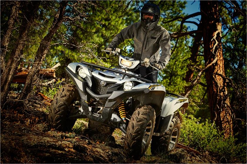 2017 Yamaha Grizzly EPS SE in Dallas, Texas