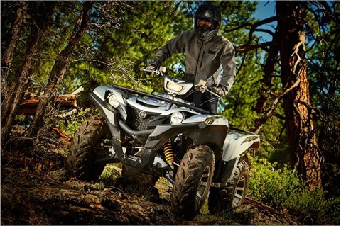 2017 Yamaha Grizzly EPS SE in Hickory, North Carolina