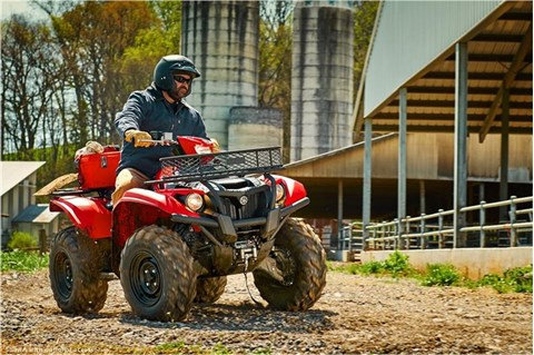 2017 Yamaha Kodiak 700 EPS in Asheville, North Carolina