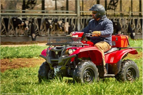 2017 Yamaha Kodiak 700 EPS in Mineola, New York