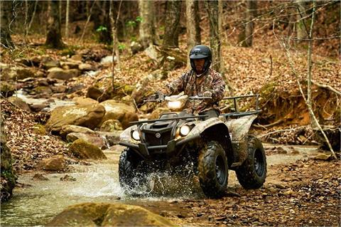 2017 Yamaha Kodiak 700 EPS in Sanford, North Carolina