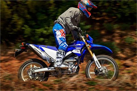 2017 Yamaha WR250R in Long Island City, New York - Photo 6