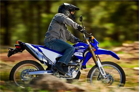 2017 Yamaha WR250R in Long Island City, New York - Photo 11