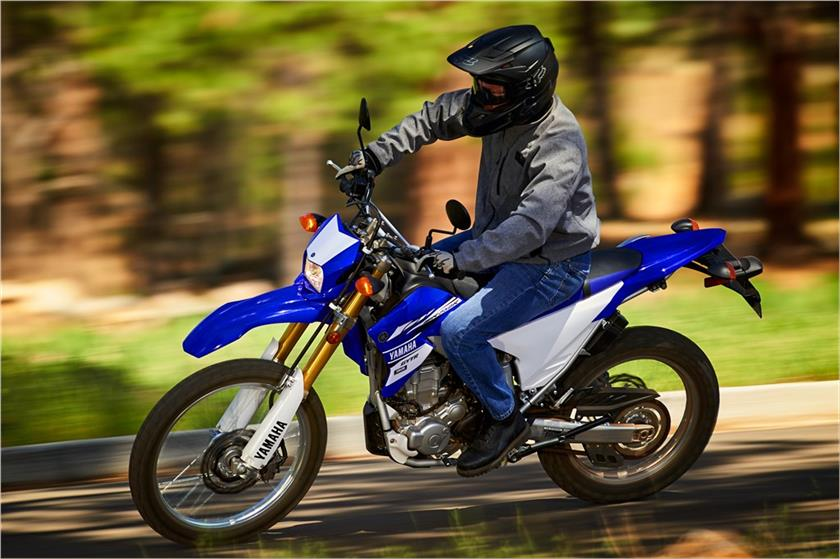 2017 Yamaha WR250R in Paw Paw, Michigan