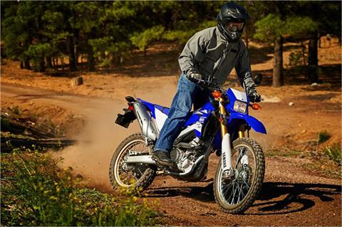 2017 Yamaha WR250R in Salinas, California - Photo 19