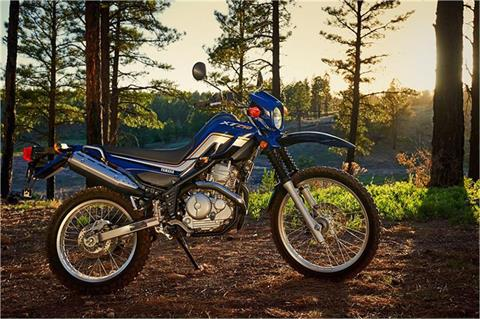 2017 Yamaha XT250 in Denver, Colorado - Photo 14