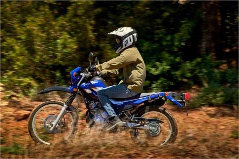 2017 Yamaha XT250 in Richardson, Texas