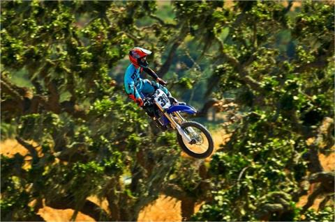 2017 Yamaha YZ250F in San Jose, California