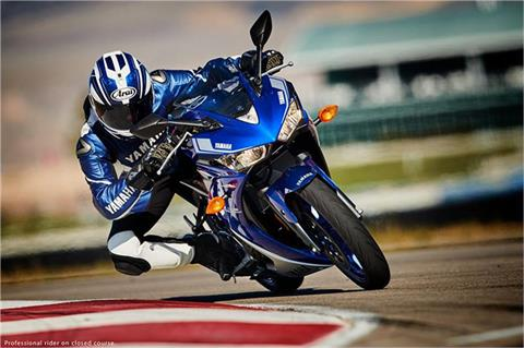 2017 Yamaha YZF-R3 ABS in Manheim, Pennsylvania - Photo 13