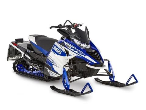 White / Yamaha Blue