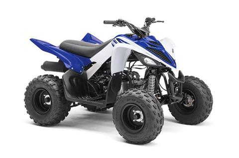 2018 Yamaha Raptor 90 in Belle Plaine, Minnesota