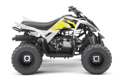 2018 Yamaha Raptor 90 in Pittsburgh, Pennsylvania