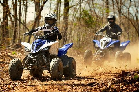 2018 Yamaha Raptor 90 in Port Washington, Wisconsin