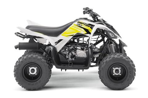 2018 Yamaha Raptor 90 in Lewiston, Maine