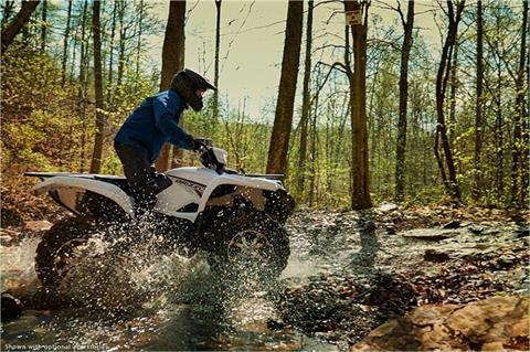 2018 Yamaha Grizzly EPS in Francis Creek, Wisconsin