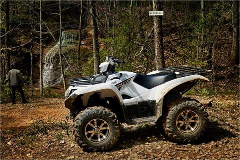 2018 Yamaha Grizzly EPS in Canton, Ohio