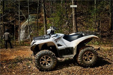 2018 Yamaha Grizzly EPS in Fairfield, Illinois