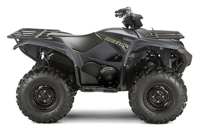 2018 Yamaha Grizzly EPS in Johnson City, Tennessee - Photo 1