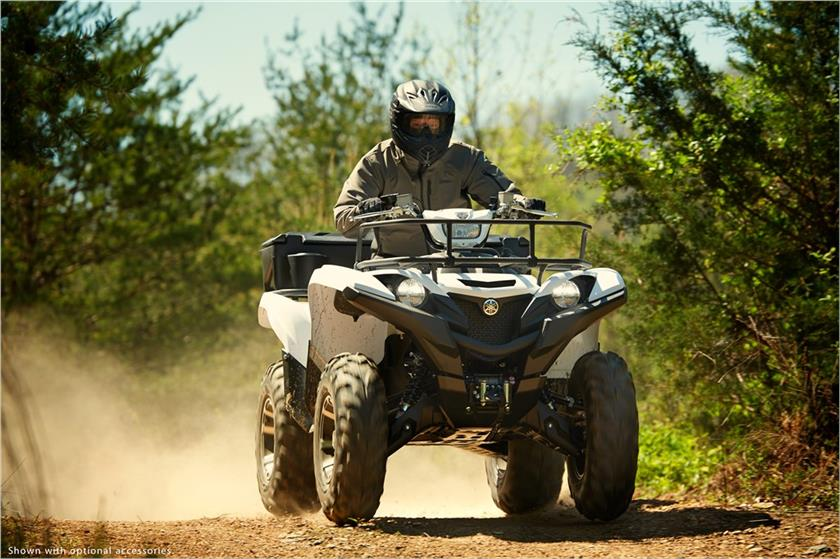 2018 Yamaha Grizzly EPS in Union Grove, Wisconsin