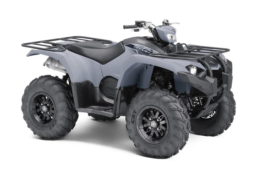 2018 Yamaha Kodiak 450 EPS in Lumberton, North Carolina