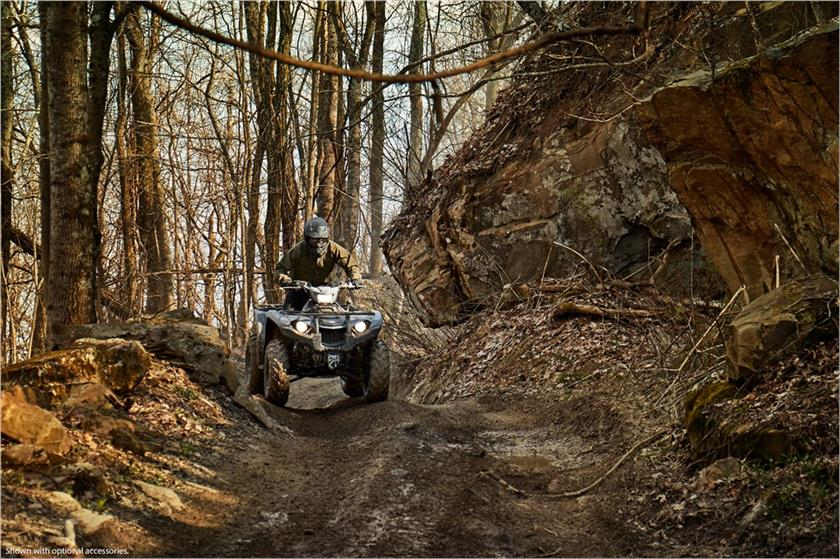 2018 Yamaha Kodiak 450 EPS in Keokuk, Iowa