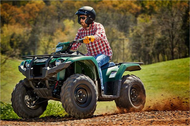 2018 Yamaha Kodiak 450 EPS in Tamworth, New Hampshire - Photo 4