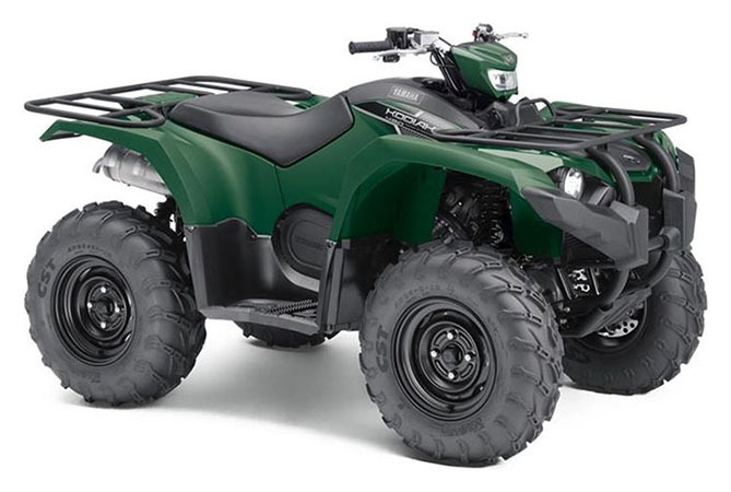 2018 Yamaha Kodiak 450 EPS in Clarence, New York - Photo 2