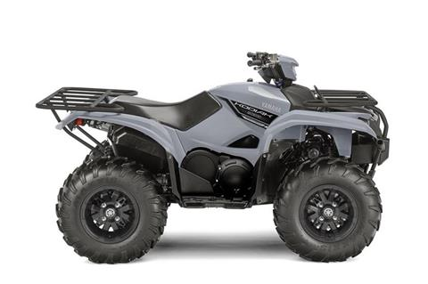 2018 Yamaha Kodiak 700 EPS in Francis Creek, Wisconsin